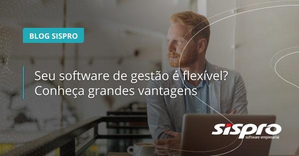 qual a importância do software de gestão flexível